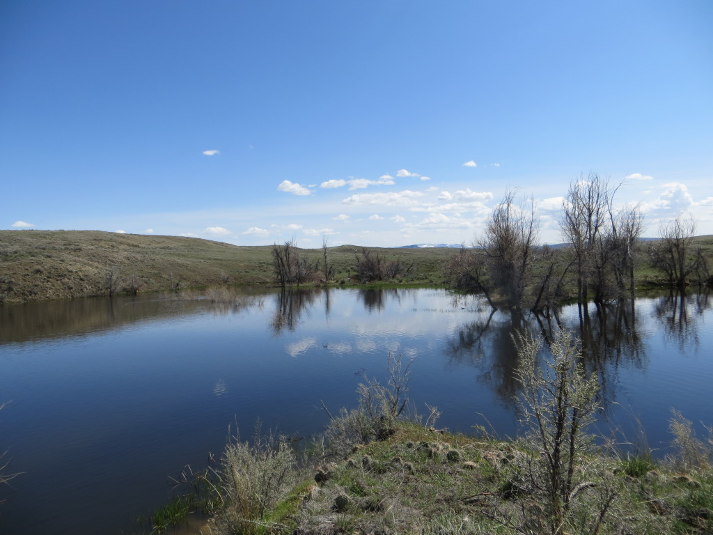 wire corral reservoir