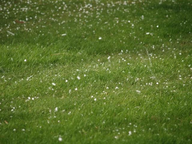hail3