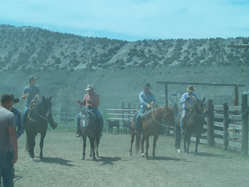 four ropers