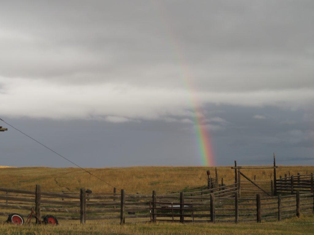 bucket rainbow
