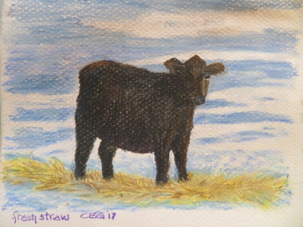 pastel cow