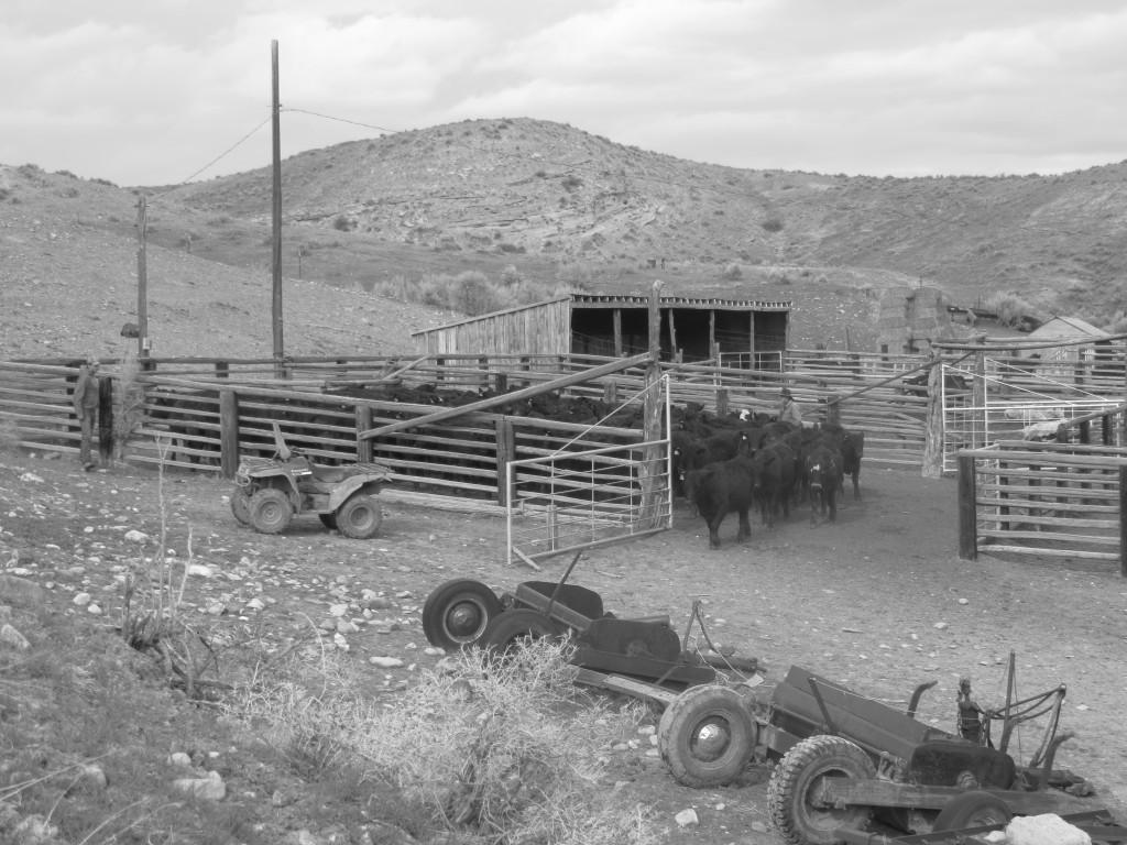 ranch course 1