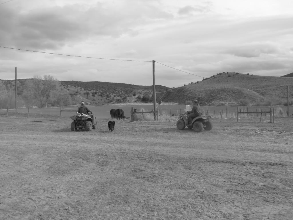ranch course 4