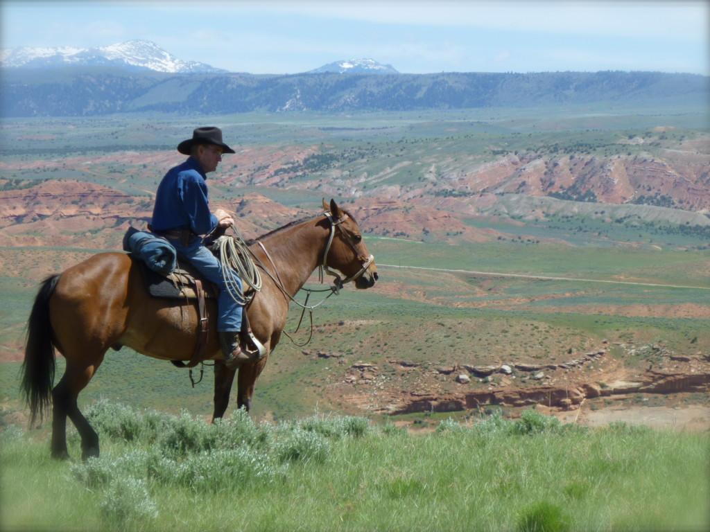 cowboy overlook