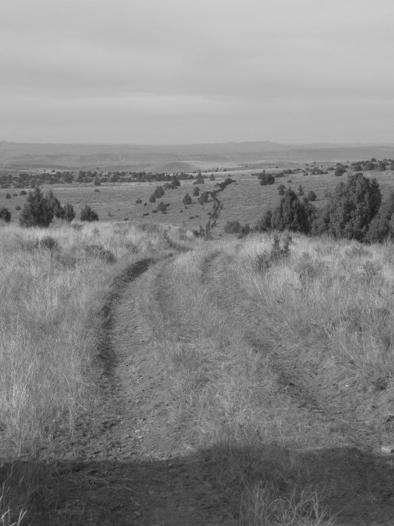 road trail