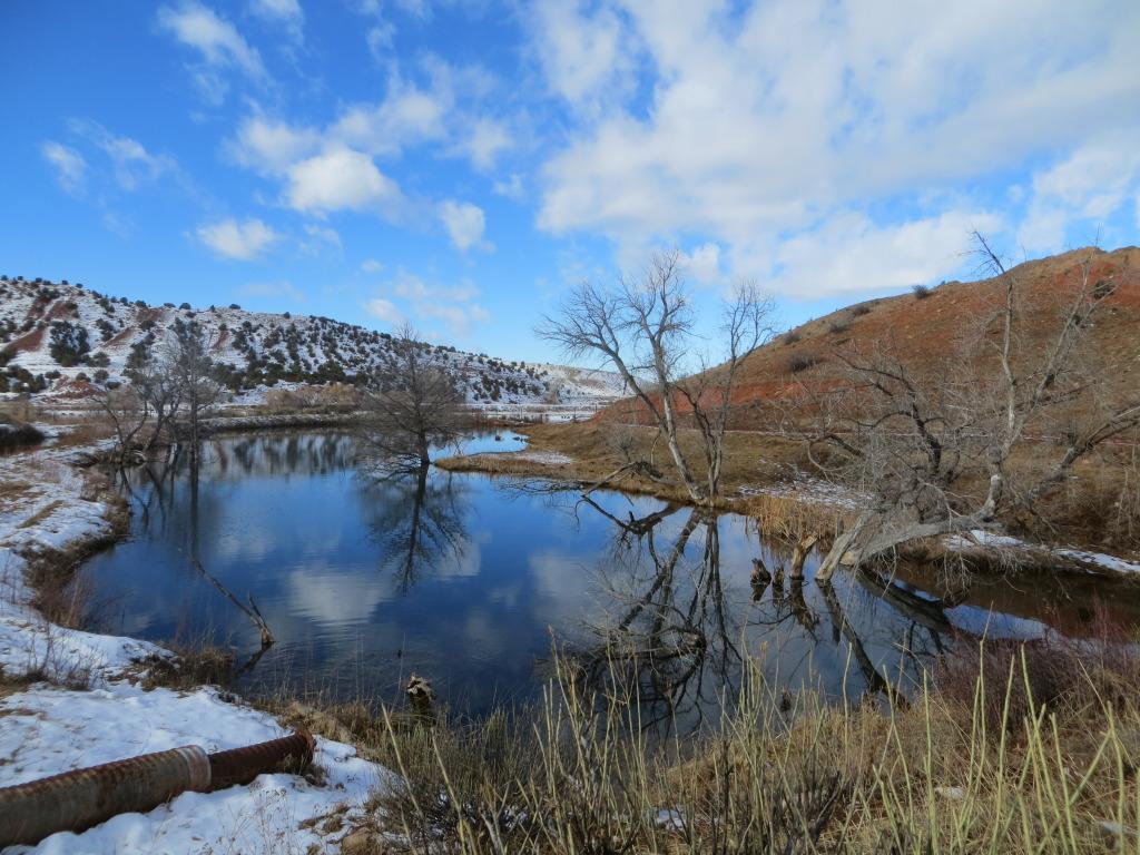 big spring pond