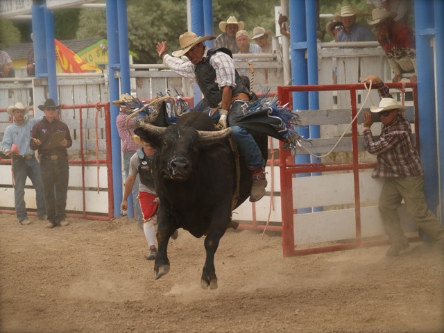 rodeo7