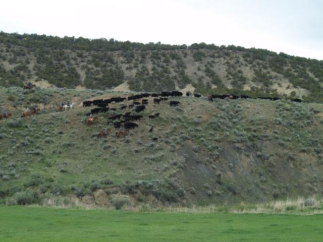 sidehill3