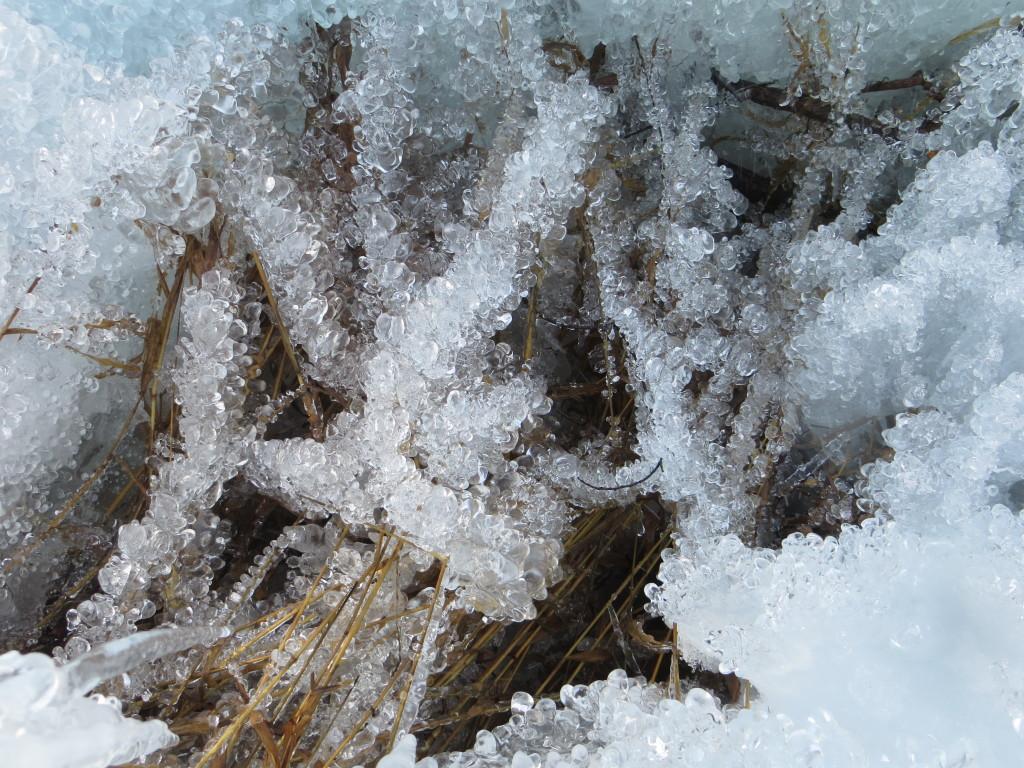 sugar ice