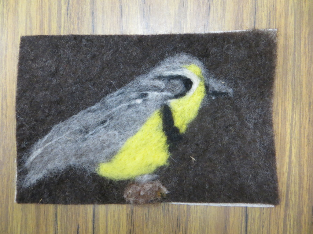 wool meadowlark